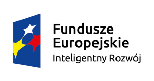 fe_ir_poziom-kolor-01